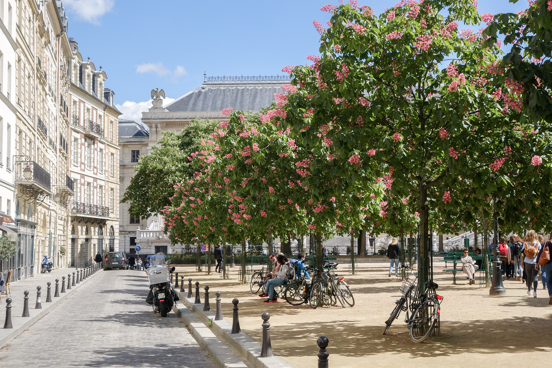 Place Dauphine is one of the most romantic spots in Paris