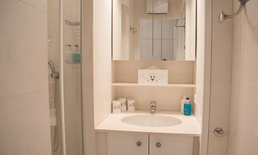 En suite bathroom with shower in the Cabernet vacation rental offered by Paris Perfect