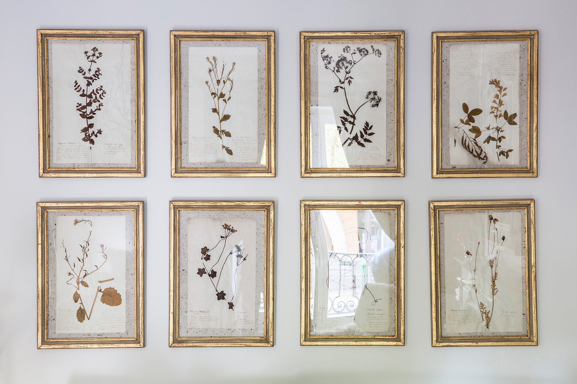 Antique Floral Prints in Living Room of the Beaujolais vacation rental offered by Paris Perfect