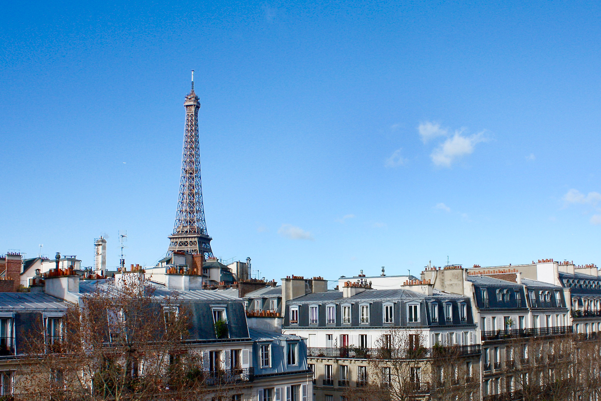 Enjoy this picture perfect view of the Eiffel Tower
