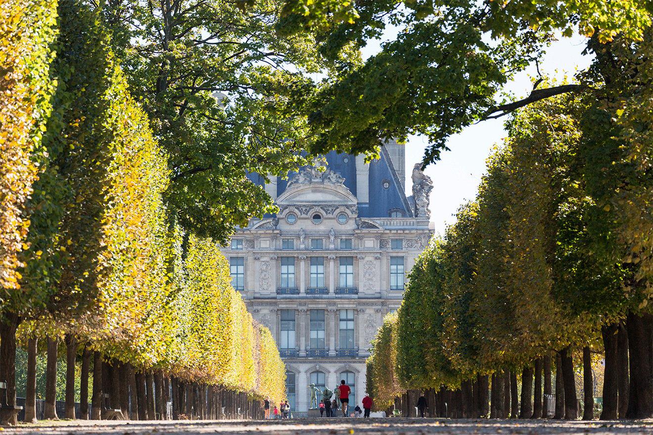 Tuileries Garden Paris