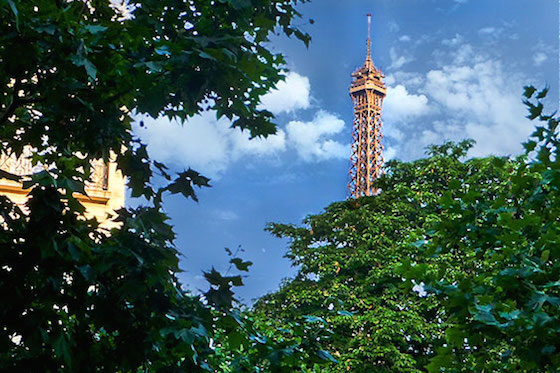 Summer View of Eiffel Tower