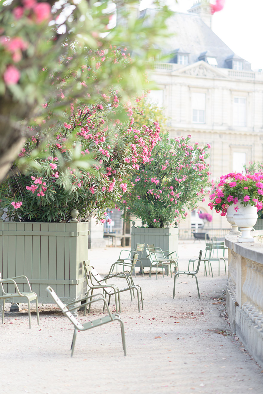 Paris Perfect vacation rental Bordeneuve located near to the Luxembourg Gardens