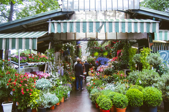 The beautiful Marché aux Fleurs on the Ile de la Cité