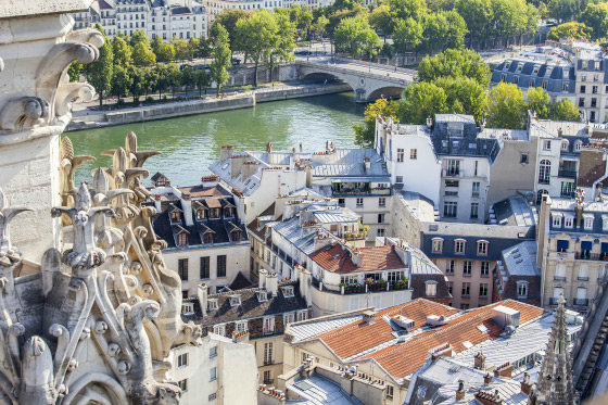 Climb the towers of Notre Dame for incredible views