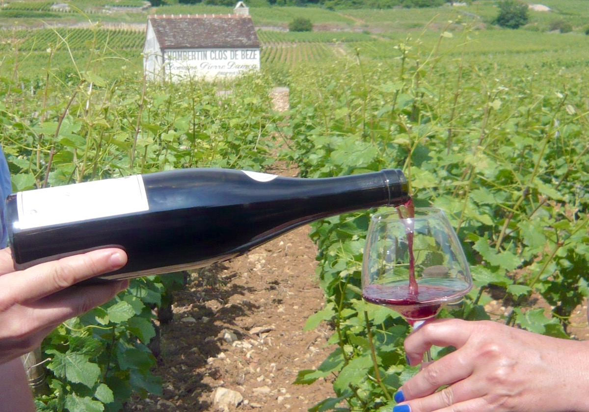 Private Full Day Tour in Burgundy
